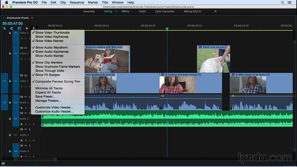 Going a bit deeper into the editing tools and layouts: Premiere Pro CC Essential Training (2015)
