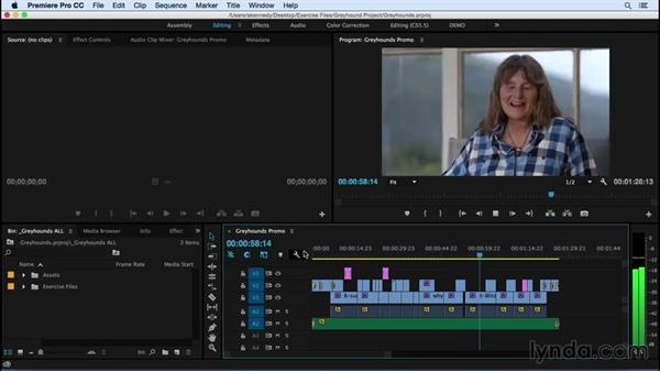 Who should watch this fast track chapter? : Premiere Pro CC Essential Training (2015)
