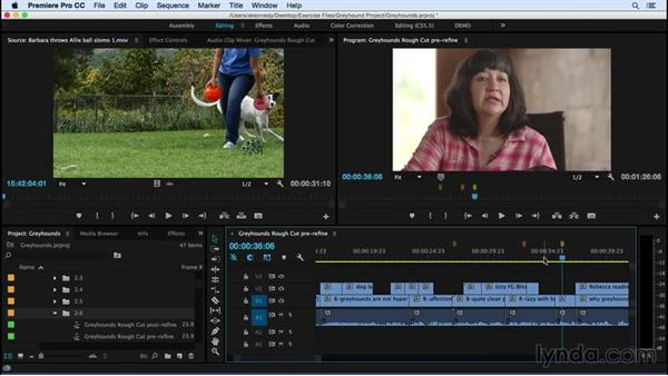 Refining the edit: Premiere Pro CC Essential Training (2015)