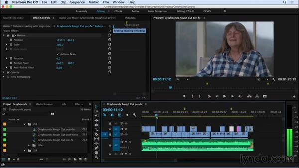Adding basic effects and titles: Premiere Pro CC Essential Training (2015)
