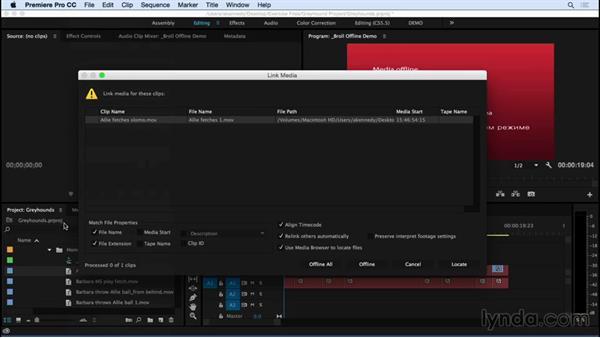 Relinking offline media: Premiere Pro CC Essential Training (2015)