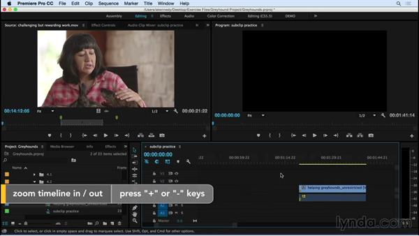 Subclipping shots: Premiere Pro CC Essential Training (2015)