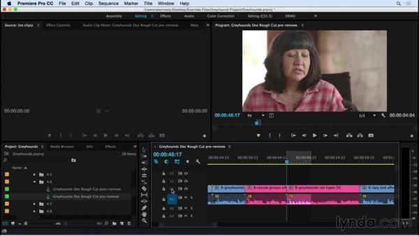 Removing material and performing basic trims: Premiere Pro CC Essential Training (2015)