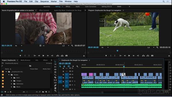 Reviewing timeline navigation and clip selection techniques: Premiere Pro CC Essential Training (2015)