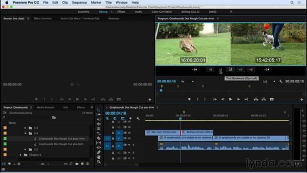 Using the Trim Monitor window: Premiere Pro CC Essential Training (2015)