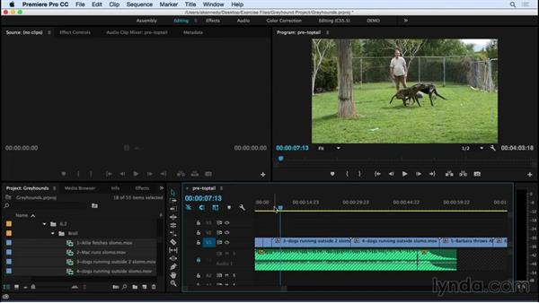 Editing montage with top and tail editing: Premiere Pro CC Essential Training (2015)