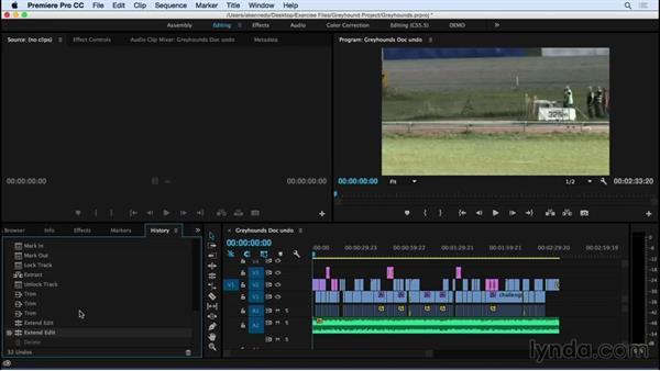 Using the History panel to undo and redo actions: Premiere Pro CC Essential Training (2015)
