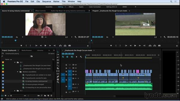 Making basic audio gain and level adjustments: Premiere Pro CC Essential Training (2015)