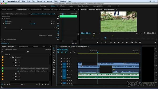 Keyframing audio: Premiere Pro CC Essential Training (2015)