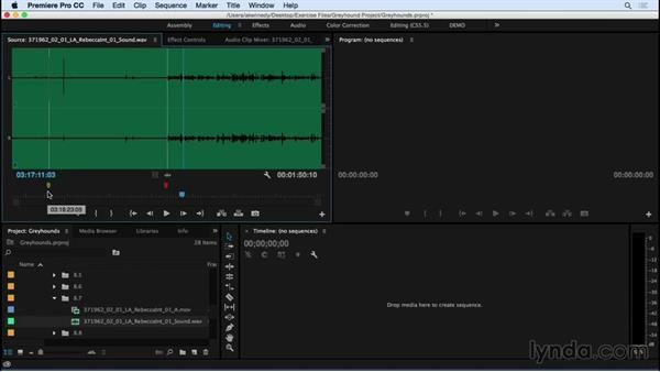 Syncing your video to high-quality audio: Premiere Pro CC Essential Training (2015)