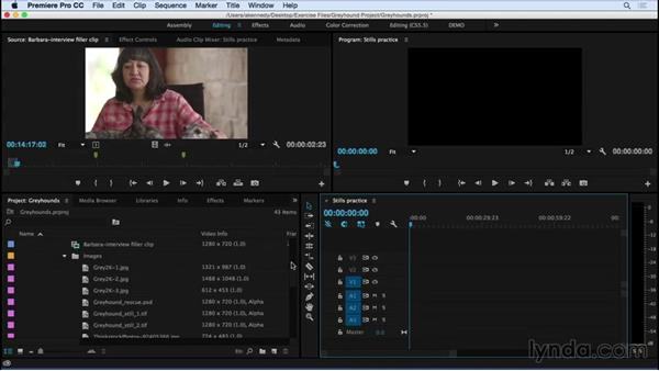 Working with stills in a video environment: Premiere Pro CC Essential Training (2015)
