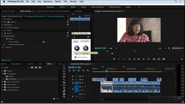 Adding and adjusting audio effects: Premiere Pro CC Essential Training (2015)