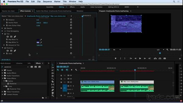 Keyframing effects over time: Premiere Pro CC Essential Training (2015)