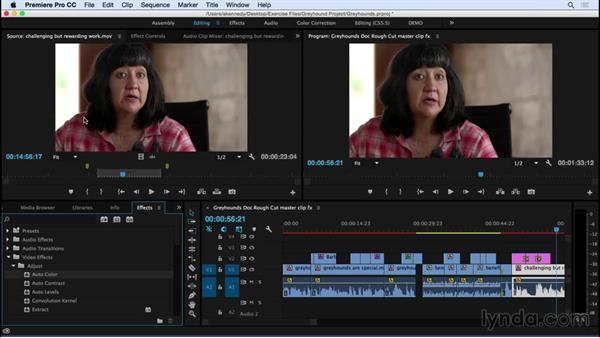 Adding effects to master clips: Premiere Pro CC Essential Training (2015)