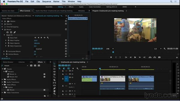 Masking and tracking effects: Premiere Pro CC Essential Training (2015)