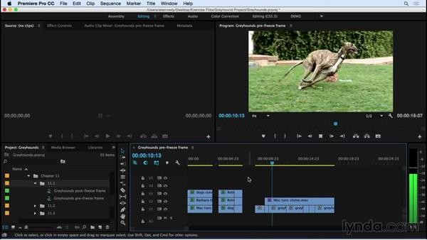 Working with freeze frames: Premiere Pro CC Essential Training (2015)
