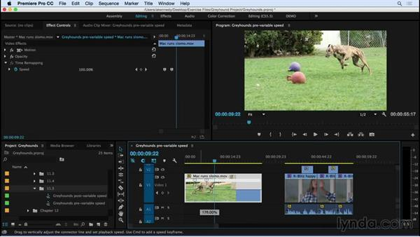 Making variable speed changes with the Time Remapping tool: Premiere Pro CC Essential Training (2015)