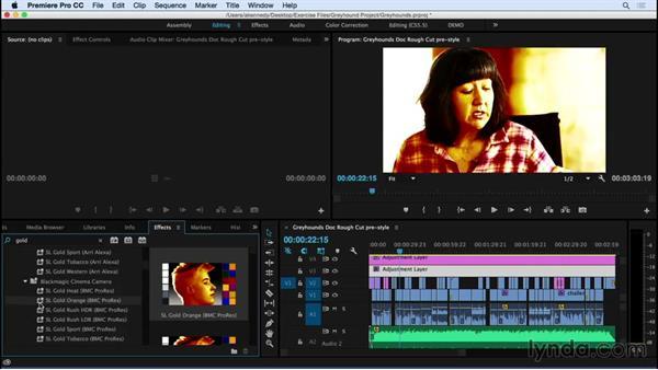 Creating looks with Lumetri presets: Premiere Pro CC Essential Training (2015)