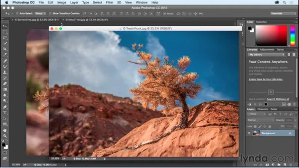 Working with tabbed documents: Photoshop CC Essential Training (2015)
