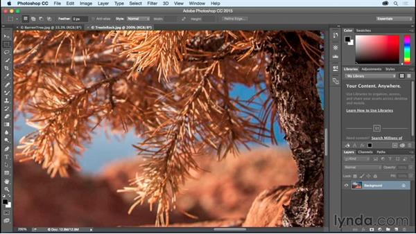 Panning, zooming, and the Rotate View tool: Photoshop CC Essential Training (2015)