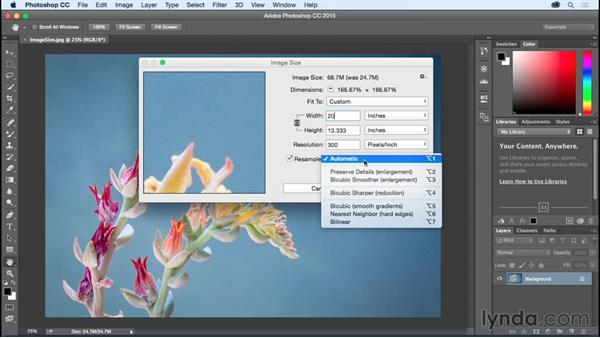 Using Image Size to resize or resample an image: Photoshop CC Essential Training (2015)