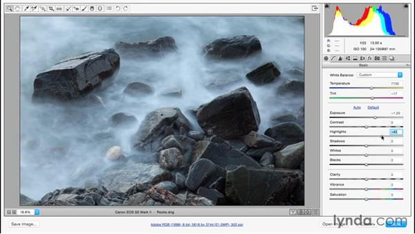 An overview of Camera Raw's adjustment tools: Basic panel: Photoshop CC Essential Training (2015)