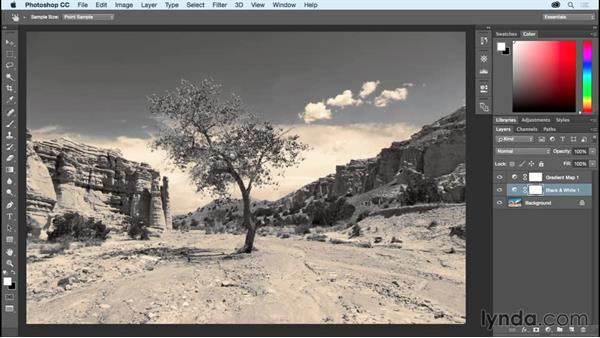Using Gradient Map to emulate traditional darkroom toning effects: Photoshop CC Essential Training (2015)