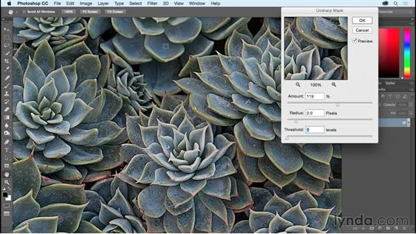 Sharpening an image with Unsharp Mask and Smart Sharpen: Photoshop CC Essential Training (2015)