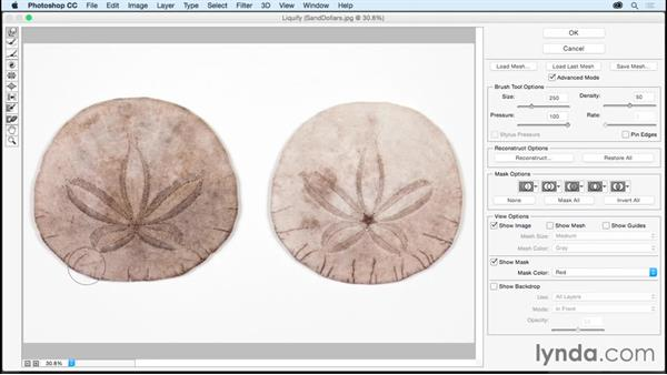 Using Liquify to quickly reshape an object: Photoshop CC Essential Training (2015)