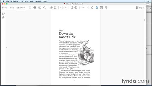 Down The Rabbit Hole Epub