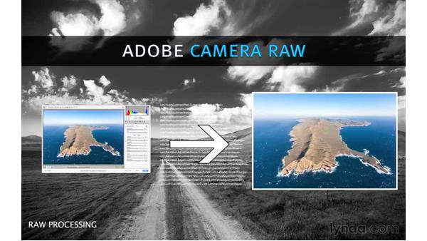 What is Camera Raw?: Photoshop CC 2015 for Photographers: Fundamentals