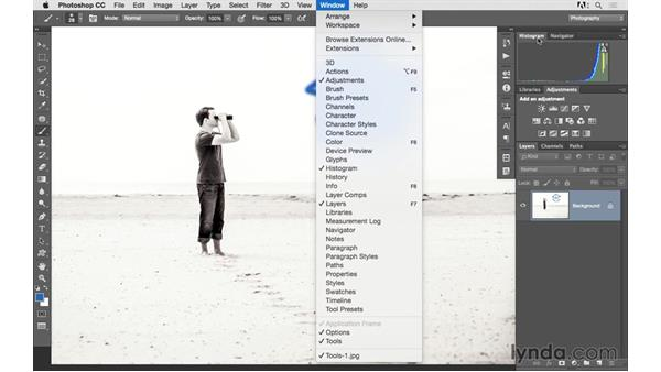 Using tools and undoing mistakes: Photoshop CC 2015 for Photographers: Fundamentals