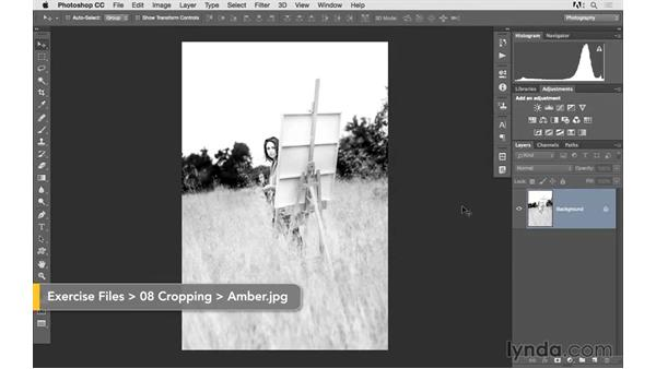 Challenge: Level and resize a photo to make a 5x5 print: Photoshop CC 2015 for Photographers: Fundamentals