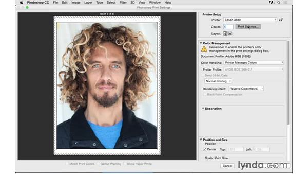 Selecting your printer and paper size: Photoshop CC 2015 for Photographers: Fundamentals