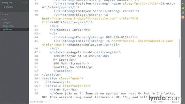 Formatting phone and email: HTML: Structured Data