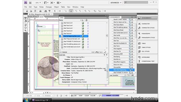 Using the Customizable Links panel: InCopy CS4 and InDesign CS4 Workflow Essential Training