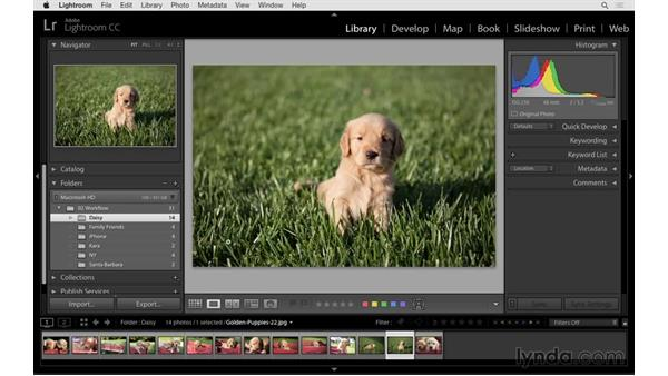 Getting started with Lightroom: Photoshop CC 2015 for Photographers: Fundamentals