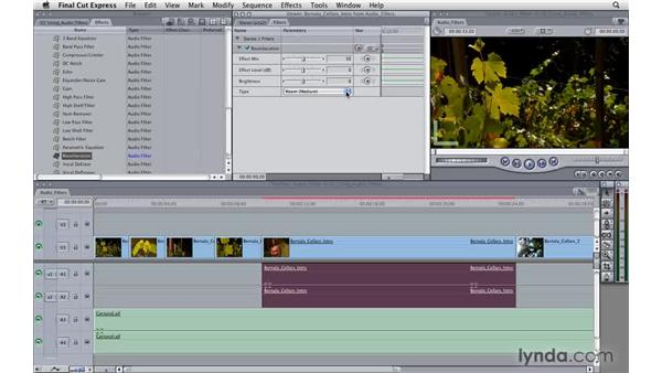Using audio filters: Final Cut Express 4 Essential Training