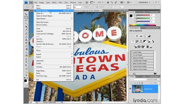 Introducing Bridge: Photoshop CS4 One-on-One: Fundamentals