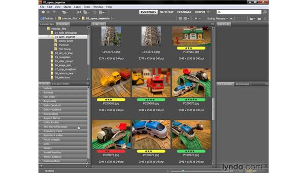 Filtering thumbnails in the Contents panel: Photoshop CS4 One-on-One: Fundamentals