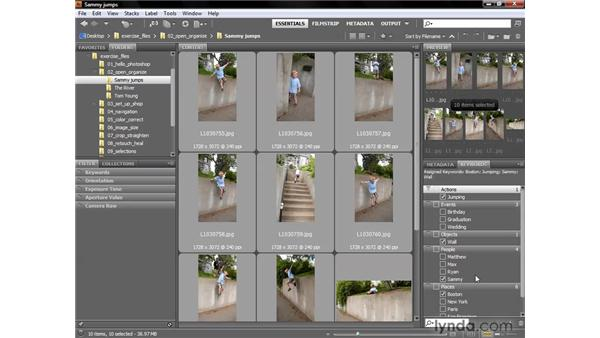 Creating and assigning keywords: Photoshop CS4 One-on-One: Fundamentals