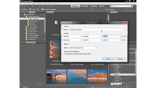 Searches and collections: Photoshop CS4 One-on-One: Fundamentals