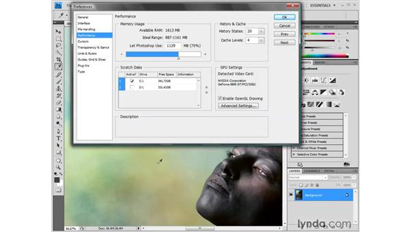 Other preferences: Photoshop CS4 One-on-One: Fundamentals