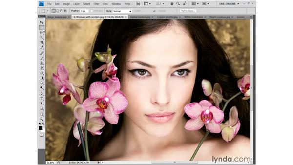 The smooth, continuous Zoom tool: Photoshop CS4 One-on-One: Fundamentals