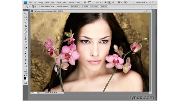 Zooming inside free-floating windows: Photoshop CS4 One-on-One: Fundamentals