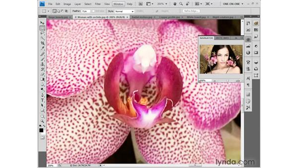Contextualized (bird's-eye) scrolling: Photoshop CS4 One-on-One: Fundamentals
