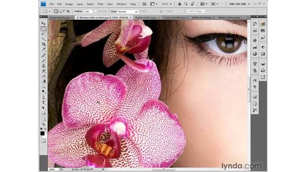 Scroll wheel tricks: Photoshop CS4 One-on-One: Fundamentals