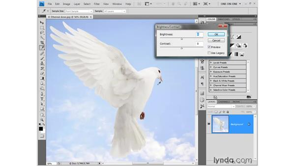 Brightness and contrast: Photoshop CS4 One-on-One: Fundamentals