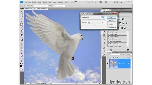 Adjusting numerical values in Photoshop: Photoshop CS4 One-on-One: Fundamentals