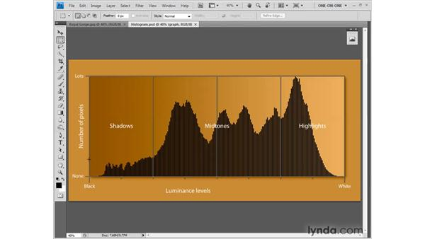 Introducing the Histogram: Photoshop CS4 One-on-One: Fundamentals